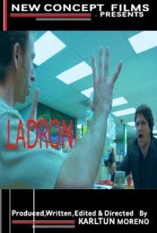 Ver película Ladron
