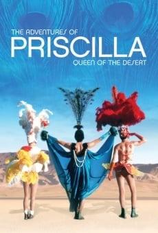 Las aventuras de Priscilla, reina del desierto online