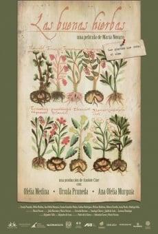 Ver película Las buenas hierbas