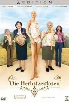 Ver película Las chicas de la lencería