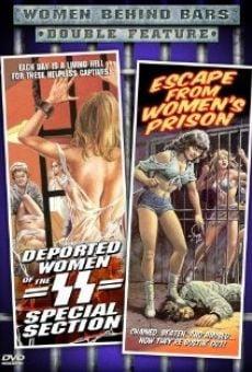 Ver película Las deportadas de las SS