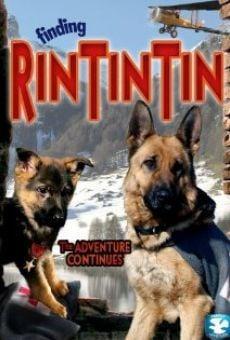 Ver película Las nuevas aventuras de Rin Tin Tin