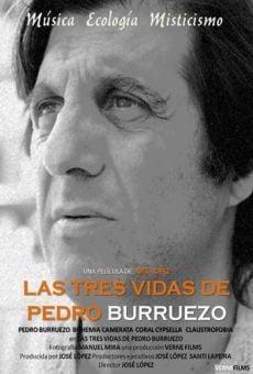 Las tres vidas de Pedro Burruezo online