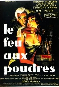 Ver película Le feu aux poudres