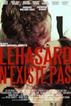 Ver película Le hasard n'existe pas