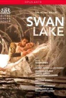 Ver película Le Lac des cygnes