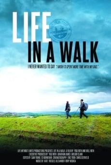 Ver película Life in a Walk
