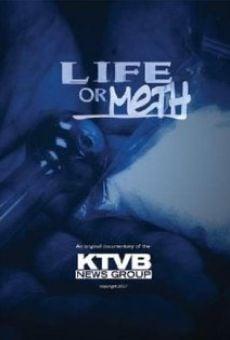 Ver película Life or Meth