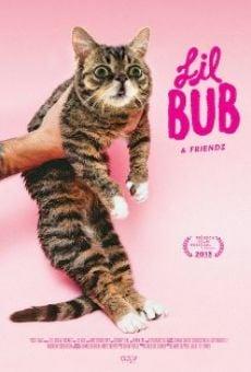 Watch Lil Bub & Friendz online stream