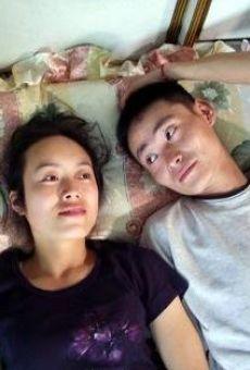 Ver película Ling yi ban