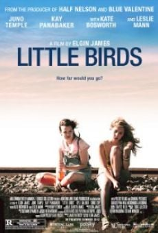 Ver película Little Birds