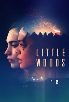 Little Woods online streaming