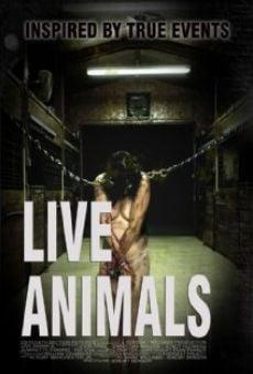 Watch Live Animals online stream