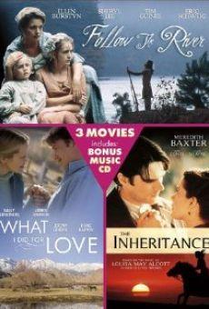 Ver película Lo que hice por amor