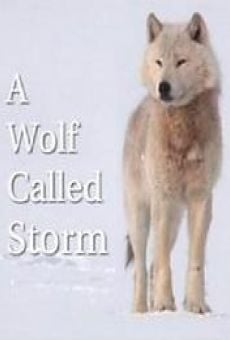 A Wolf Called Storm (The Natural World) online free