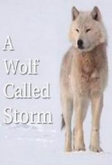 A Wolf Called Storm (The Natural World) online