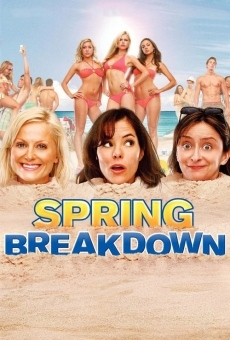 Spring Breakdown on-line gratuito