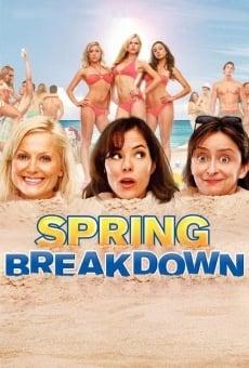 Ver película Locas vacaciones de primavera