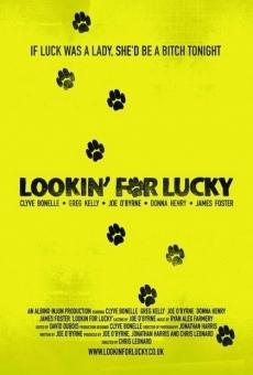 Ver película Buscando a Lucky