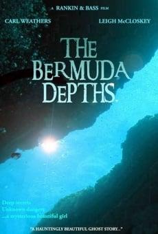 Ver película Los abismos de las Bermudas