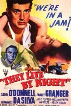 Ver película Los amantes de la noche