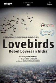 Lovebirds: Rebel Lovers in India on-line gratuito