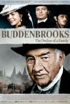 Ver película Los Buddenbrook