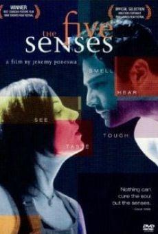 The Five Senses on-line gratuito