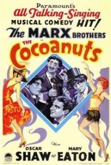 The Cocoanuts on-line gratuito