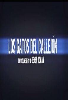 Los gatos del callejón (El ritmo del garaje ? 30 años después)