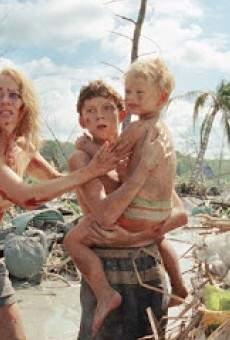 Ver película Los hijos artificiales