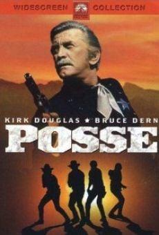 Ver película Los justicieros del Oeste