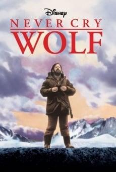 Ver película Los lobos no lloran