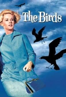 Ver película Los pájaros
