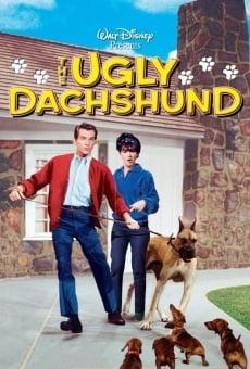 Ver película Los perros de mi mujer