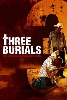 Ver película Los tres entierros de Melquíades Estrada