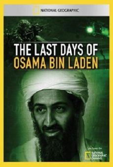 The Last Days of Osama Bin Laden online streaming