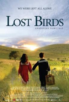 Lost Birds online