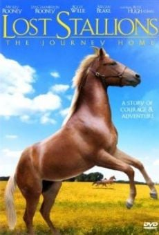 Ver película Lost Stallions: The Journey Home
