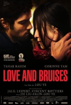 Ver película Love and Bruises