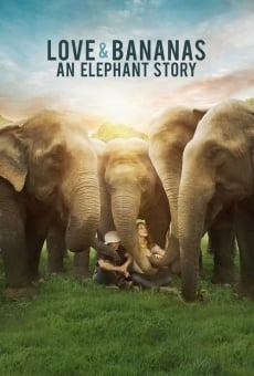 Love & Bananas: An Elephant Story on-line gratuito