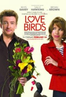 Ver película Love Birds