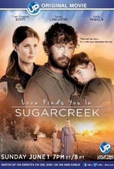 Watch Love Finds You in Sugarcreek online stream
