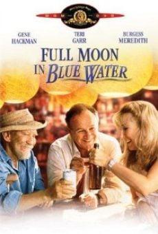 Luna llena en agua azul online