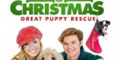 Filme completo 12 Dogs of Christmas: Great Puppy Rescue