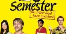 13 Semester (2009) stream