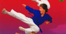 3 Ninjas Kick Back film complet