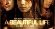 Ver película Una vida hermosa