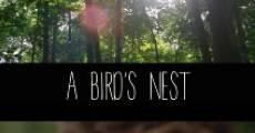 A Bird's Nest (2014)