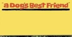 Ver película El mejor amigo del perro